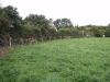 fencing5.jpg